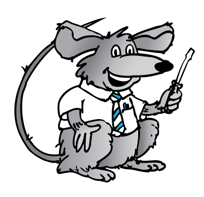 Ocean Grove Rat